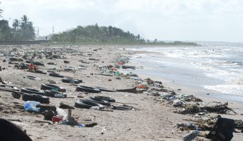 Polluted Beach JBA