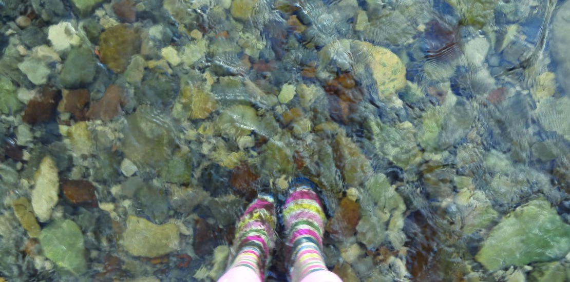 JBA Wellies in Water