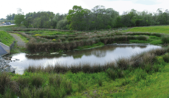 JBA Perry Common SuDS regeneration