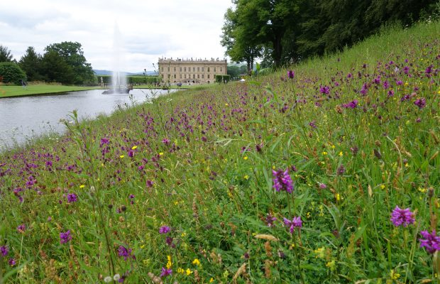 JBA Archaeology and Heritage -stately home