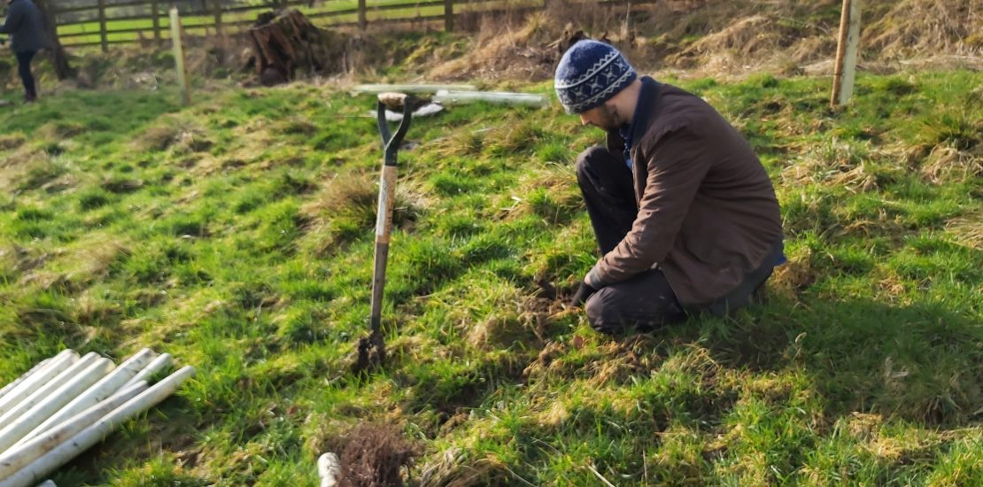 Tree planting at Broughton Park