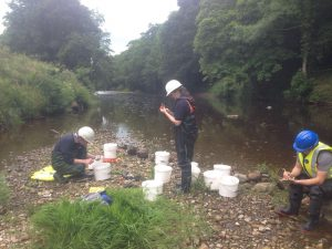 JBA ecologists in action